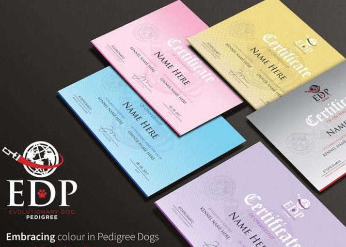 Evolutionary Dog Pedigree Has Arrived
