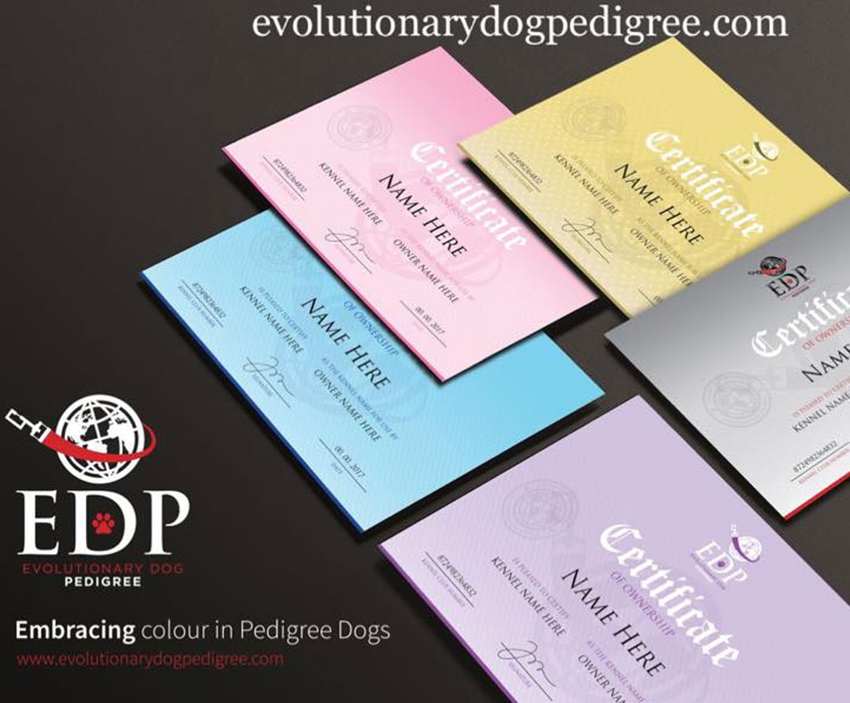 Evolutionary Dog Pedigree Has Arrived