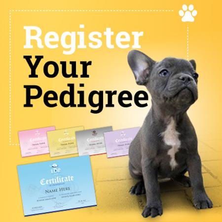 Full Pedigree Certification