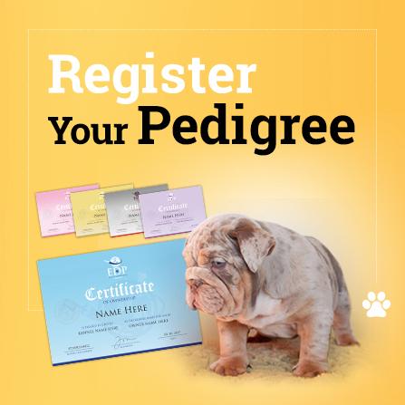 dog pedigree form